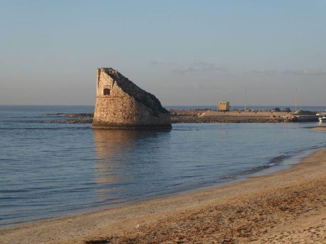 Torre Pali